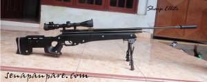 senapan sharp elite