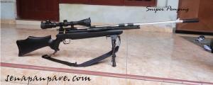 sharp sniper pomping